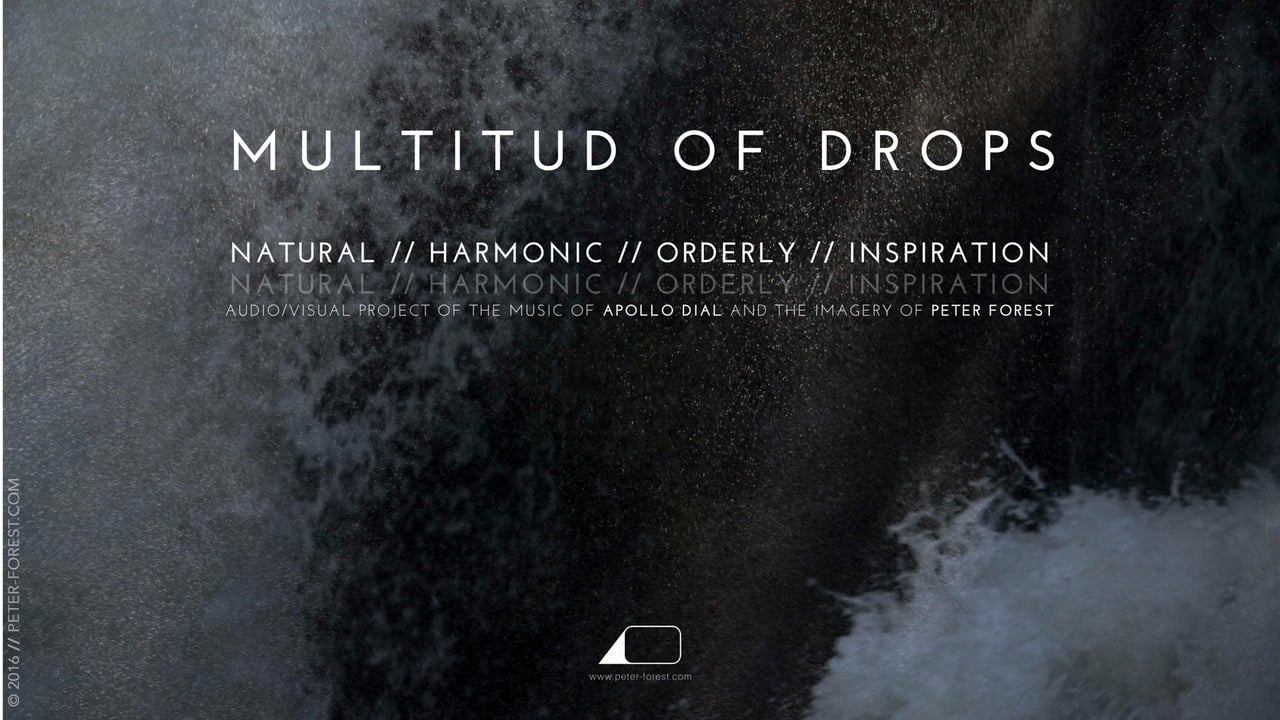 "Presentació projecte audiovisual i musical ""Multitud of Drops"" @ Casal de Joves Palau Alòs"
